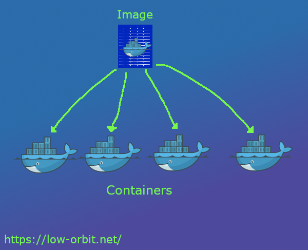Docker Container vs Image