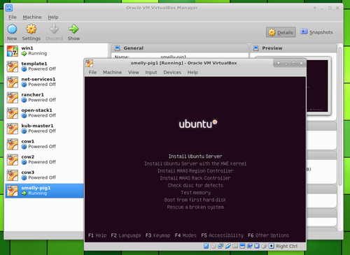 Ubuntu Server in VirtualBox select install