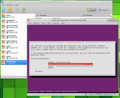 Ubuntu Server in VirtualBox lVM