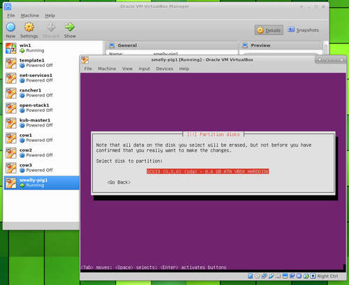 Ubuntu Server in VirtualBox partition