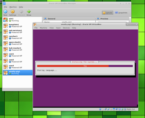 Ubuntu Server in VirtualBox installing