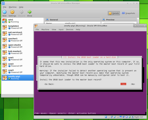 Ubuntu Server in VirtualBox install grub